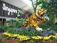 Bạn có con nhỏ hãy đưa tới 5 sở thú Singapore sau