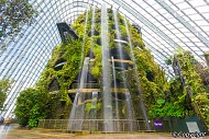 "Cloud Forest ""Rừng mây"" ở Singapore"