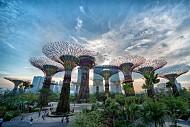 Garden By The Bay - Khu Vườn Độc Đáo Nhất Singapore