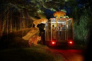 Sở thú Singapore khiến trẻ em mê mẩn