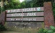 Taman Negara - vườn quốc gia của Malaysia