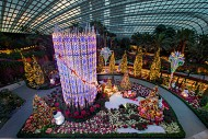 Vương quốc hoa Flower Dome
