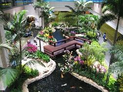 Singapore về đích về dịch vụ sân bay năm 2016
