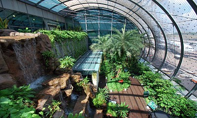 Sân bay Changi và 5 sự thật đầy bất ngờ