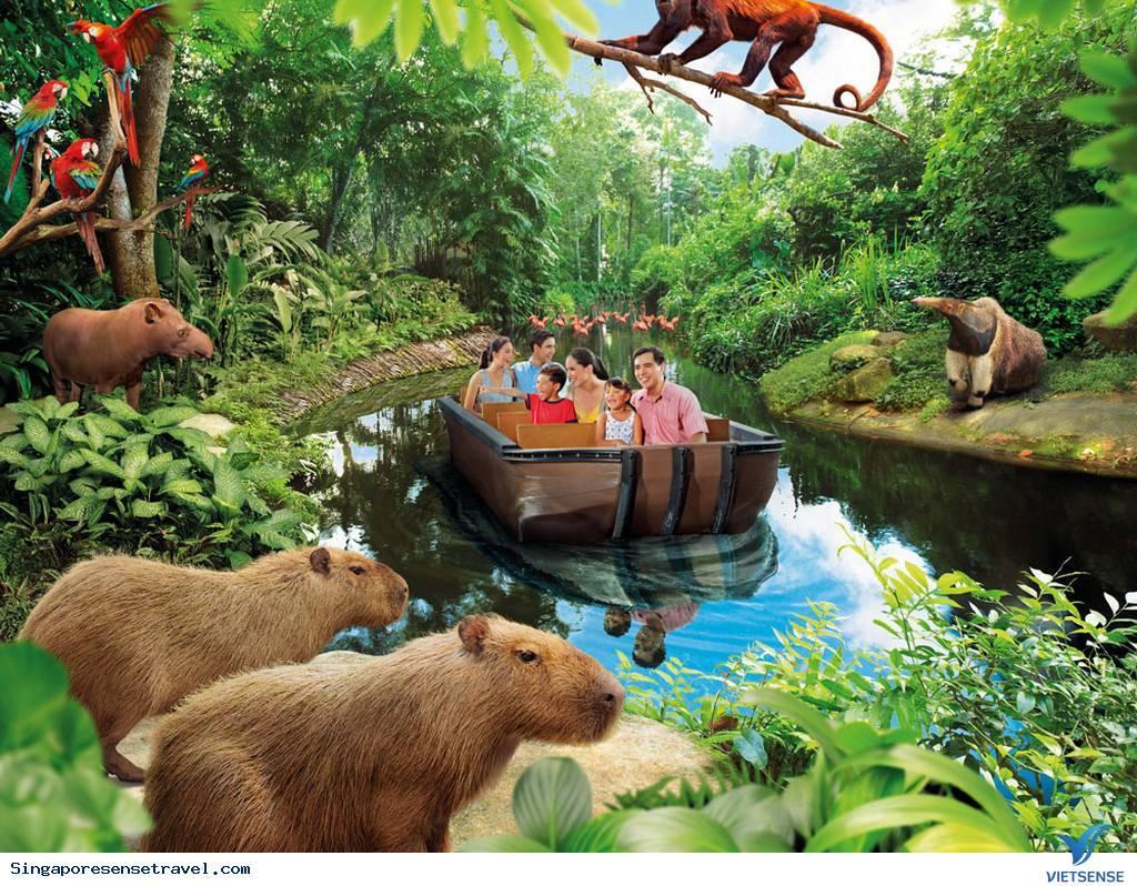Công Viên Thủy Cung River Safari,Cong Vien Thuy Cung River Safari