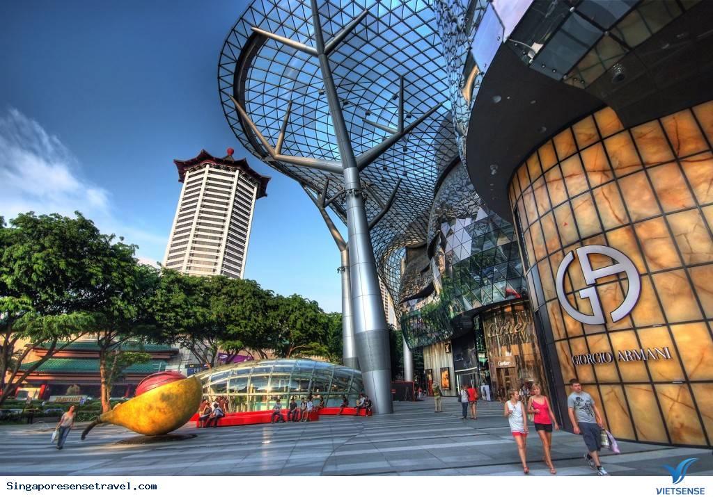 Đừng đến Singapore nếu bạn vẫn muốn về nhà,dung den singapore neu ban van muon ve nha
