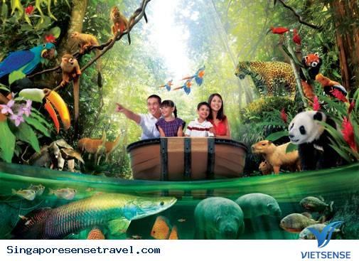 Hơn 700 động vật con được sinh ra trong công viên Singapore.,hon 700 dong vat con duoc sinh ra trong cong vien singapore