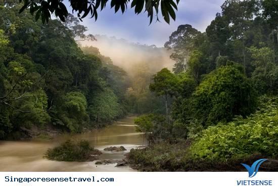 Lựa chọn trang phục phù hợp khi du lịch Malaysia,lua chon trang phuc phu hop khi du lich malaysia