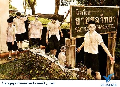 Những lễ hội đặc sắc ở Singapore dịp thu đông, lễ hội ở singapore, lễ Hari Raya Haji, chợ phiên Kampong Glam, Halloween
