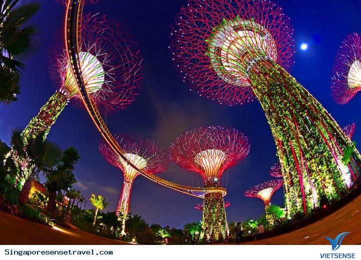 Trải nghiệm cuộc sống của Singapore về đêm