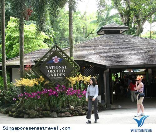 Vườn Bách Thảo Singapore,Vuon Bach Thao Singapore
